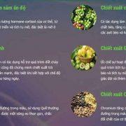 thanh-phan-bio-healthy-slim-360